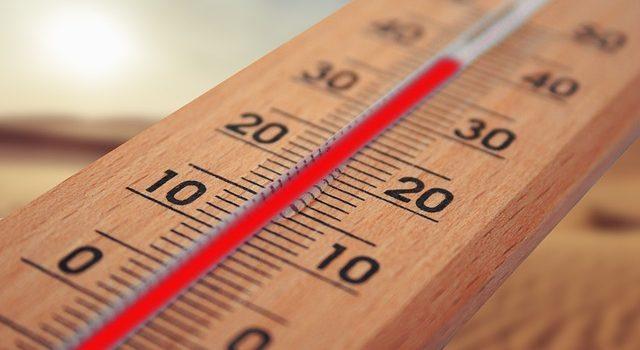 料理と温度